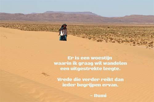 Afbeedling met tekst over de woestijn